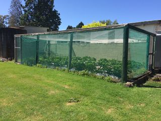 Strawberry Enclosure
