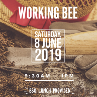 Titoki Working Bee | Saturday, 8 June 2019